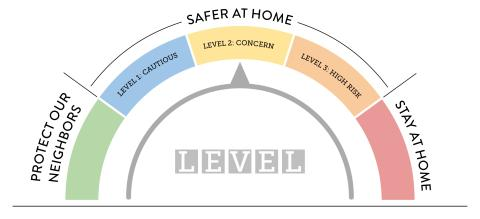 Infographic for the safer at home level 2